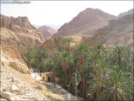 Tunizija 11 (C)2003