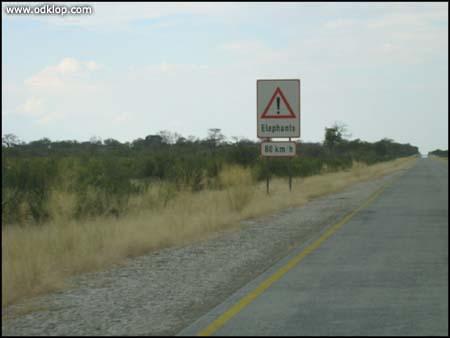 Namibia- (C)2002 - Marko Smrekar