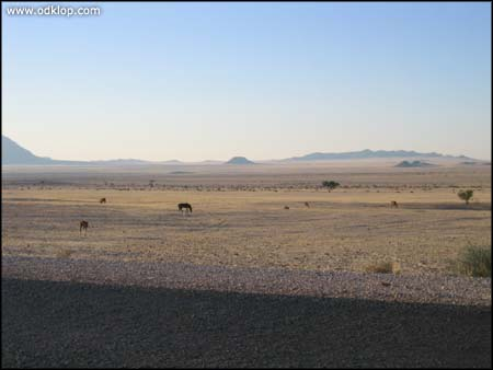 Namibia-90.jpg (C)2002