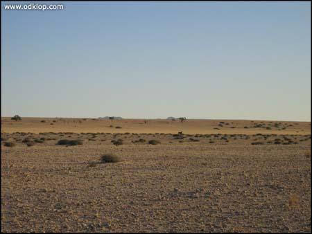 Namibia-91.jpg (C)2002